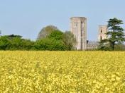 My Norfolk