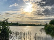 Salhouse Broad in early evening sun