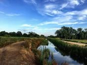 North Walsham - lake walks