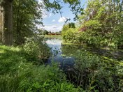Ickworth Lake