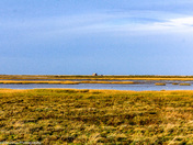 Project 52 - Norfolk Landscapes