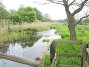 pensthorpe nature reserve.