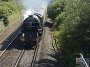 Steam trains this week-end
