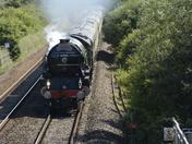 Steam trains this week-end