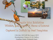 Nait Babies Charity Photographic Exhibition