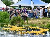 Great Bungay Duck Race