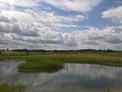reflections at Martlesham meadows