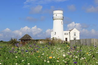 Project 52 - Week 30 - Summer in Norfolk