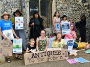 Extinction Rebellion Waveney East making aware of the loss of bees