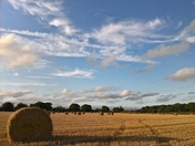 bales and blue sky