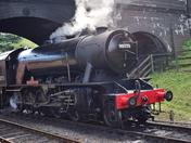 The Royal Norfolk Regiment Steam Locomotive
