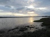 Evening sun over the estuary
