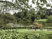 project 52 Norfolk Parks  Sandringham