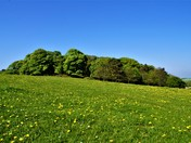 Project 52 - Norfolk Parks - Sheringham