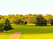 Project 52 - Holkham Park