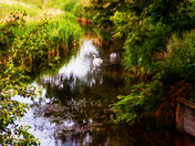 River Stour