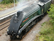 Torbay Express pulls into Weston-super-Mare on Sunday.