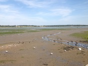 Low tide at Mistley