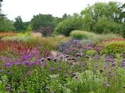 beautiful pensthorpe gardens