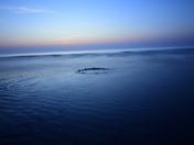 Sunrise over Winterton dunes