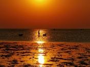 Golden sunset Brancaster North Norfolk