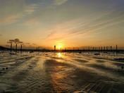 Royal Sands High Tide.