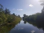 Catfield Dyke