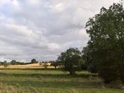 Pastures Playford