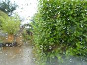Precipitation !