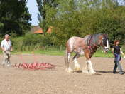 Theme 52. Working the soil by horse & by Horsepower