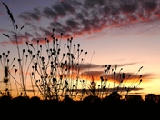 Sunset tonight 6.15p.m.