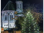 Holt christmas light switch on