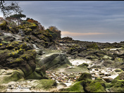 Rocks on the foreshore