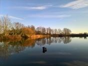 Parkens Reservoir Waldringfield