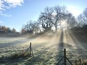 Frosty Morning in Lower Gresham