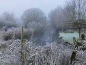 PROJECT 52. FROST, FROSTY MORNING ALONG THE RIVER