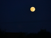 Last nights moon rising, taken at 4.45pm.