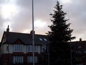 """Christmas tree by the roundabout next to the """"Car & Commercial"""" garage"""