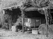 Old barn treasures