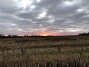 Cambridgeshire sunset