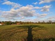 Tree Shadow old Martlesham