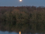 Reflections on Alton Water