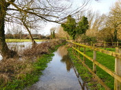 FLOODING AT HALL STAITHE