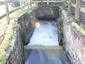 Taverham Mill