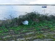PROJ 52, HIDDEN, BOAT UNDER SHRUBS AT WELLS NEXT SEA