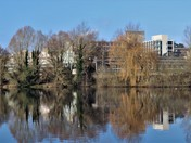 Reflections UEA Broad