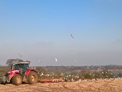 ploughing at Waldringfield