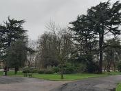 Storm Ciara visits Barking Park