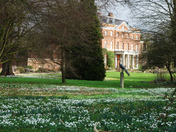 Snowdrops at Raveningham Hall