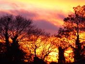 NORFOLK WINTER SUNSET